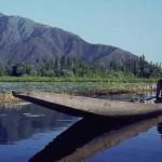 kashmir lake, shikara