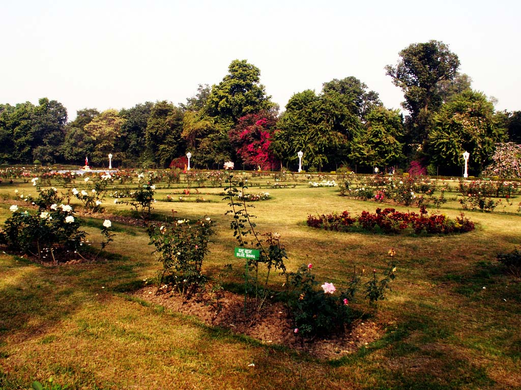 Top 5 Gardens of Rajasthan