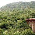An experience not to miss in Rajasthan is a genuinely local ninety minute train ride from Phulad to Khamblighat. This wonderful hidden train journey is located about 2 hours from […]