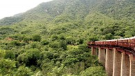 An experience not to miss in Rajasthan is a genuinely local ninety minute train ride from Phulad to Khamblighat. This wonderful hidden train journey is located about 2 hours from...