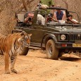 Ranthambore is a popular destination in Rajasthan that attracts tourists from all over the world. Known for its national park, this city has a lot more in store for its...