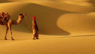 With a varying topography like no other nation, India has not one, but 3 deserts; the arid high altitude trans-Himalayan cold desert, the glimmering white Rann of Kutch, and the […]