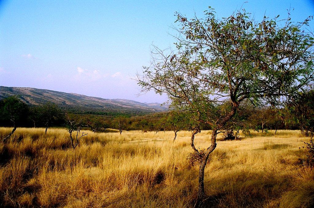 Aravali_range